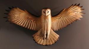 barn.owl.jason.tennant